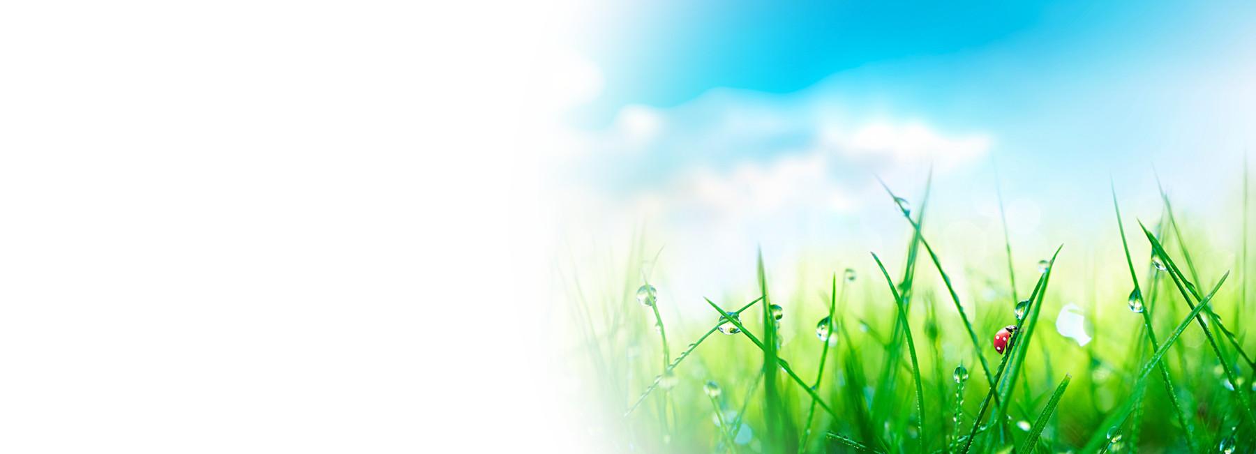 Umweltfreundliches Drucken